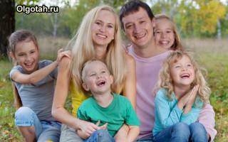 Какие предусмотрены виды выплат опекунам несовершеннолетних детей в России