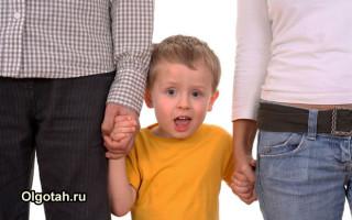 Виды и размеры выплаты пособия на приемного ребенка в России