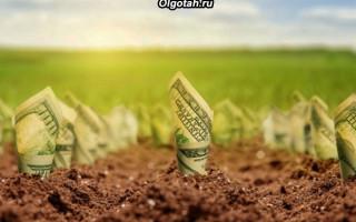 Права граждан на получение льгот по земельному налогу