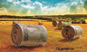 Виды субсидий на развитие сельского хозяйства