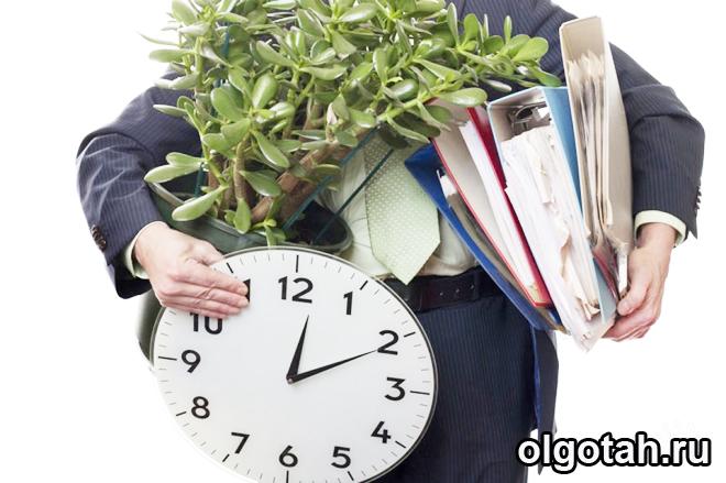 Человек несет папки с документами, цветок и часы