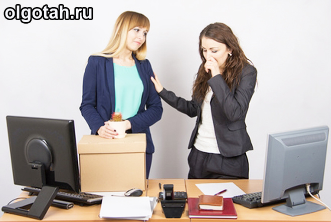 Девушки общаются в офисе