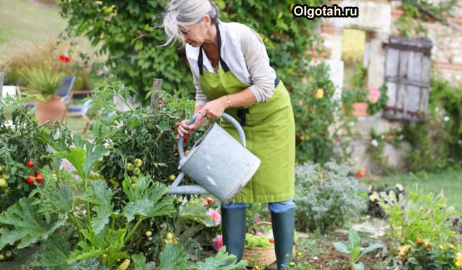 Пенсионерка поливает цветы из лейки на своей даче