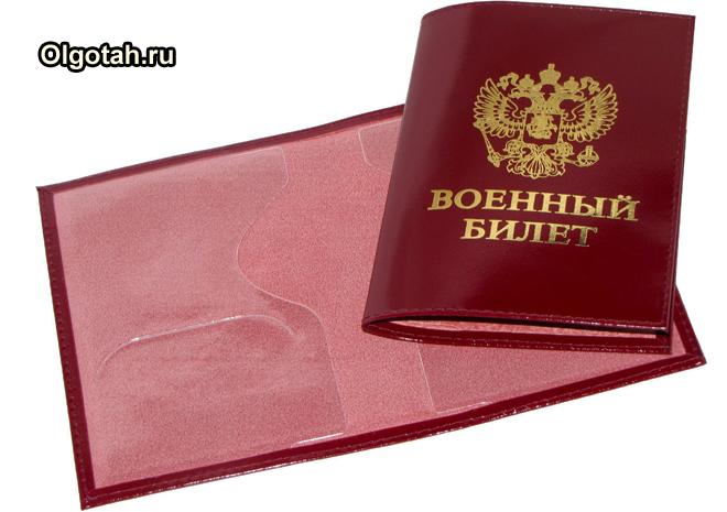 Изображение - Образец рапорта на материальную помощь военнослужащим raport-na-materialnuyu-pomoshch-voennosluzhashchim-1