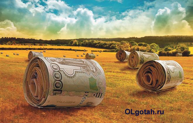 Деньги на поле