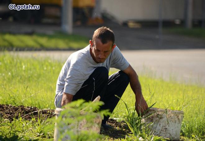 Мужчина сажает растения
