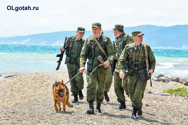 Пограничники с собакой обходят территорию